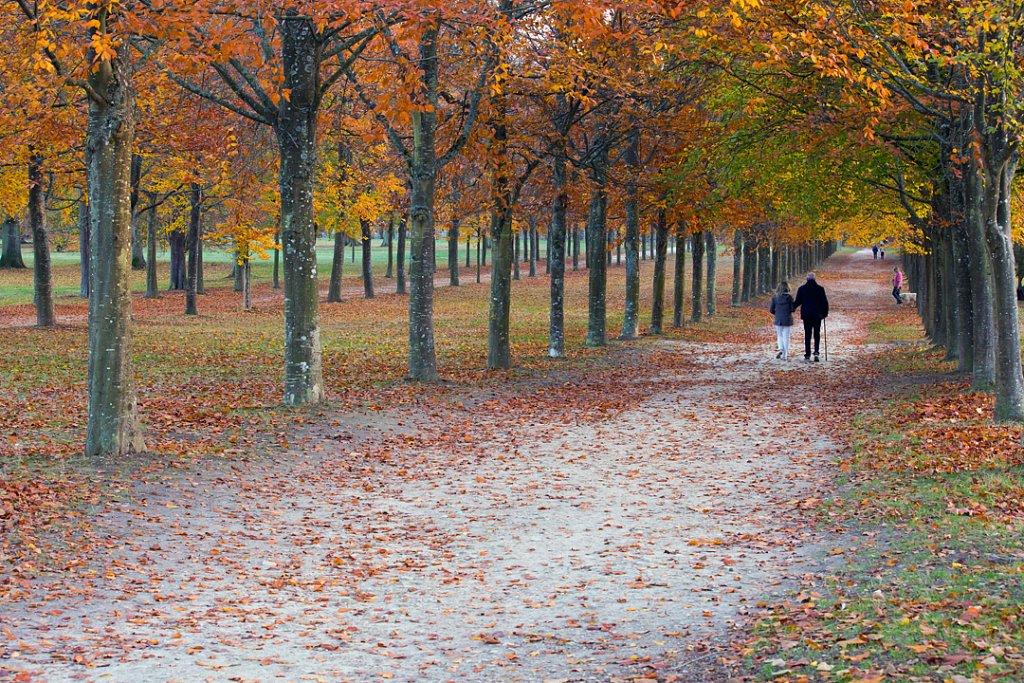 Parc - Versailles